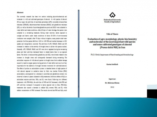 dissertation pakistan foreign investment Expansion of foreign direct investment (fdi) and the continuous increase of mncs have changed the structure of the 6in this dissertation, for simplicity we denote as foreign-owned firms or foreign firms those firms which are either purely like pakistan, bangladesh, ugandahowever, it should be.